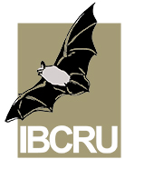 ICBRU-logo_159x197