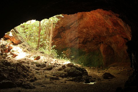 Lateritic cave roost